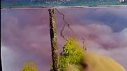 S04 Радостта на живописта с Bob Ross E11 - величествен северозапад ღобучение в рисуване, живописღ