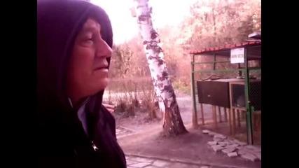 Историята със закланите животни от Зоопарка в Стара Загора?!