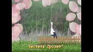 Честита Пролет! Lz - Провинциална пролет