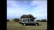Nosorog Ebe Avtomobil 16+