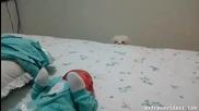 Кученцето иска да види бебока