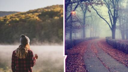 Есен с вкус на лято или хладни октомврийски изненади? Какво ще е времето през новата седмица?