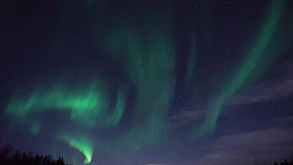 Dance of heavenly gems: Northern lights blaze bright in the skies above Murmansk region