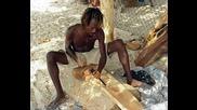 Реге Музика И Снимки От Африка