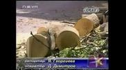 Да поскършим малко клонки - Господари на ефира,  24.06.2009