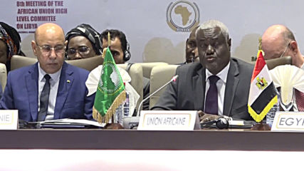 Republic of Congo: African Union committee holds summit on Libyan conflict