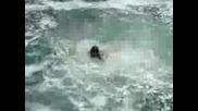 Скокове В Бурно Море - Созопол