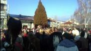 Сурва Полена 01.01.2012