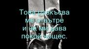 Сашо Роман - 7дена 7 нощи.wmv