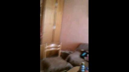 Video0005