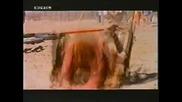 Наричат Го Булдозер Филм С Бъд Спенсър Sie Nannten Ihn Mucke 1979