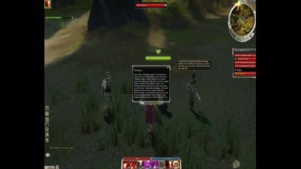 Guild Wars Gameplay