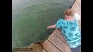 Жена храни гладни риби , но не очакваше това !