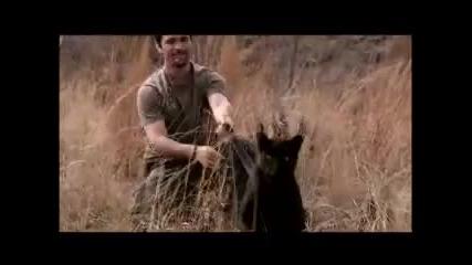 Кевин Ричардсън - повелителят на лъвовете