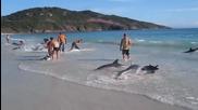 Те просто снимаха морето и плажа, това което се случи е немислимо! Video