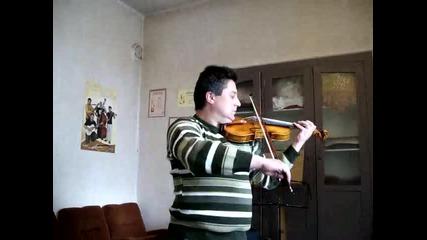 професионална цигулка