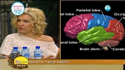 Тони Райт за неподозираните възможности на мозъка ни - 1 част