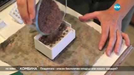 Плацента за вкъщи - биологичен отпадък или новата панацея?