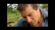 Откачен човек яде голяма ларва