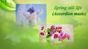 Приятни минути с пролетна красота! ... ( Accordion music - Marino Castelli ) ...
