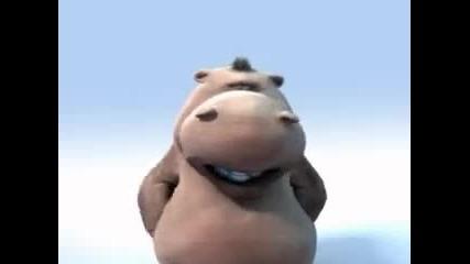 Happy-hippo-the-lions-sleeps-ton