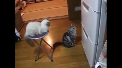 Сезам, отвори се!