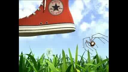 Bugs Race
