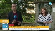 Неизвестен стреля по домашни котки в оживен квартал в Горна Оряховица