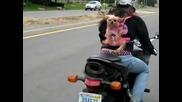 Mомиче вози кученцето си на пистов мотор