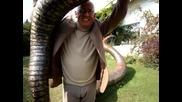 Най - голямата змия в света - 25 000 €