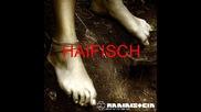 ~ Rammstein - Haifisch ( Liebe Ist Fur Alle Da Album ) ~