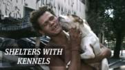 São Paulo are making homeless shelters dog friendly