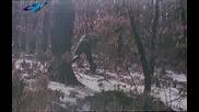 Вампири,  таласъми - част 1 - Български игрален филм