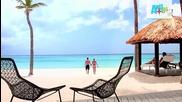 Aruba Beaches- The Best Caribbean Beaches