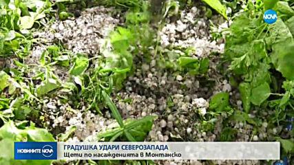 Мощни бури и градушки удариха половин България