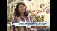 Изложба на редки орхидеи може да се види  в Ботаническата градина на БАН
