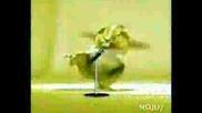 Танцуващ Хамстер