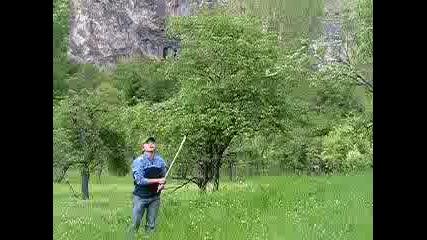 Бейзбол В Гората