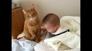 Коте и бебе 3