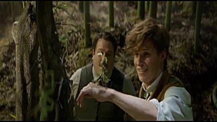Нова магия замества Хари Потър - First Look Fantastic Beasts and Where to Find Them