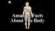 10 Невероятни факти за човешкото тяло..