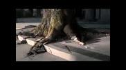 Johnnie Walker - Tree