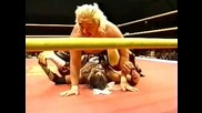 Hayabusa vs. Gannosuke: Frontier Martial - Arts Wrestling (1999)