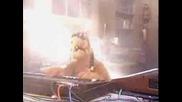 Alf Gangsta