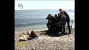 Без Дрехи - Воайори Гледат Яки Мацки По На Плажа - 18.04.2008 * High Quality