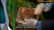 C S I: Маями С10 Е04 + Субтитри Част (1/2)