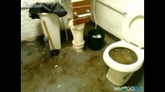 Тоалетната повръща