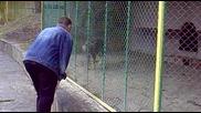 Педри в зоопарка 2 (педри и вълка)