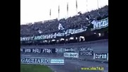 Ascoli Ultras