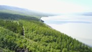 Iceland Is Growing New Forests for the First Time in 1000 Years